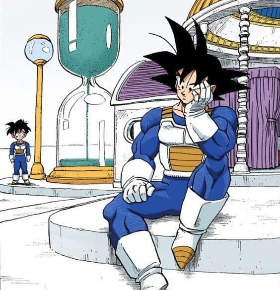 goku and gohan in the spirit and time room